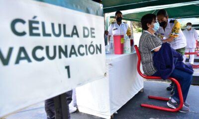 Afirma López-Gatell que estados pueden comprar vacunas vs Covid-19