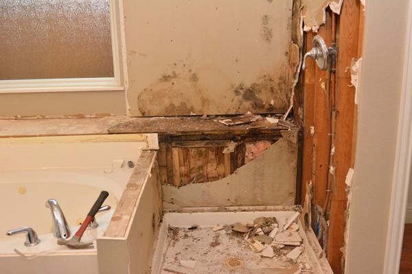 Mold Remediation in Fort Walton Beach, Florida, 32547 | Ready