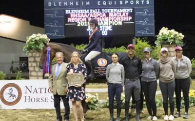 Julia Stone and Let's Go Rise to the Top of the 2019 NHSAA/ASPCA Maclay Regional Championships – Region 8