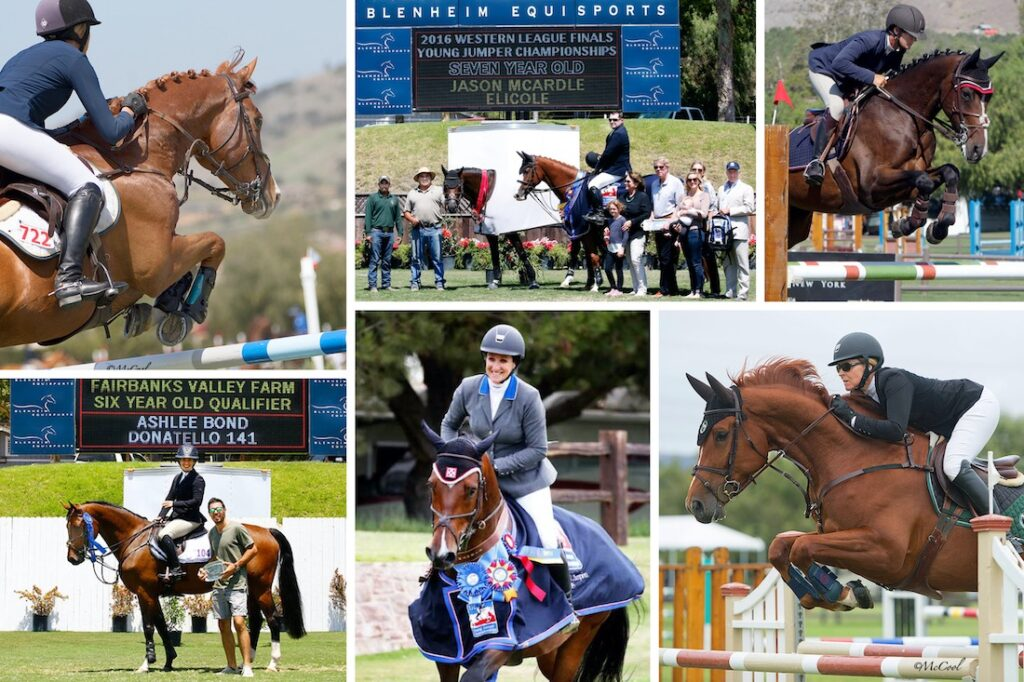 young jumpers series