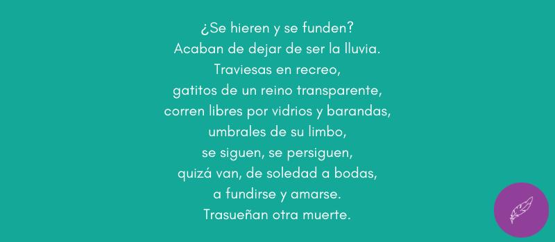 Poema Gotas de la poeta uruguaya Ida Vitale