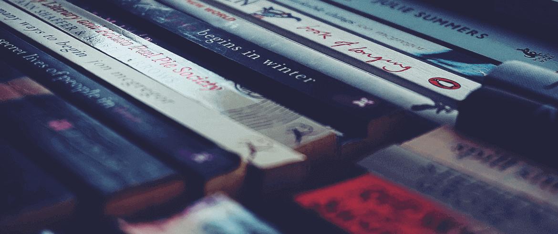 novelas por entregas