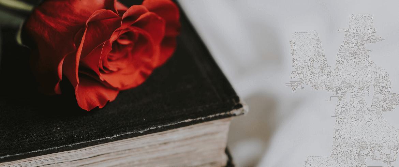 La tradición de Sant Jordi celebra al libro en su día