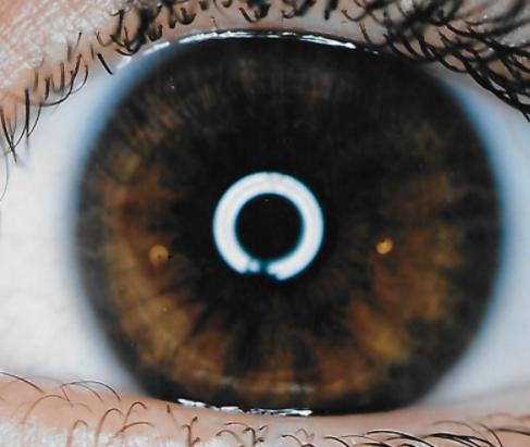 Ring of Purpose Brown Eye