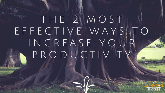 The 2 Most effective ways to increase your productivity