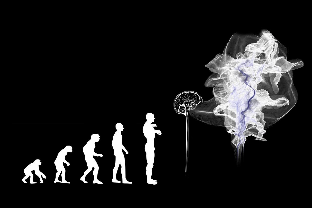 Evolution of mindfulness