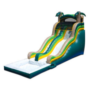 18' Palm Tree Water Slide | Inflatable for Rent | Rent-All located in Storm Lake