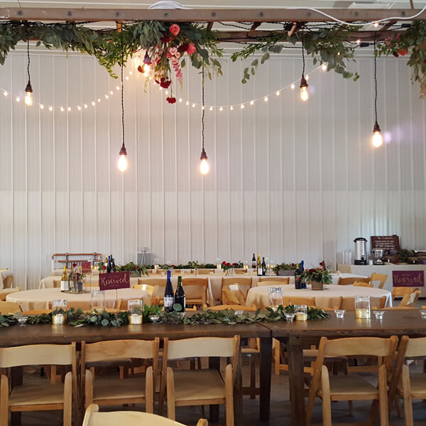 Edison Bulbs | Celebrations by Rent-All located in Sioux Center | Wedding Rental | Ceiling Decor For Rent