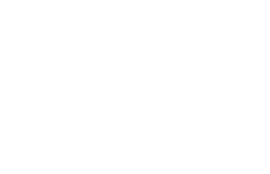 AKC Registered Labradors North Texas Logo
