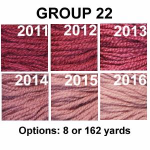 Waverly Group 22