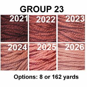 Waverly Group 23