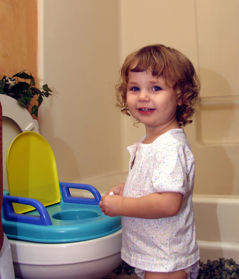 Potty Training Young Child Blog