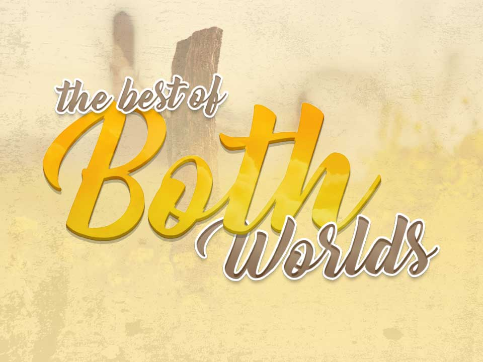Article: The Best of Both Worlds