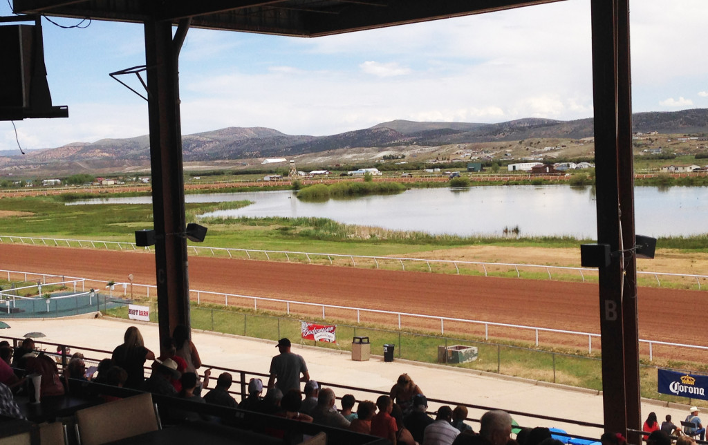Wyoming Downs Track