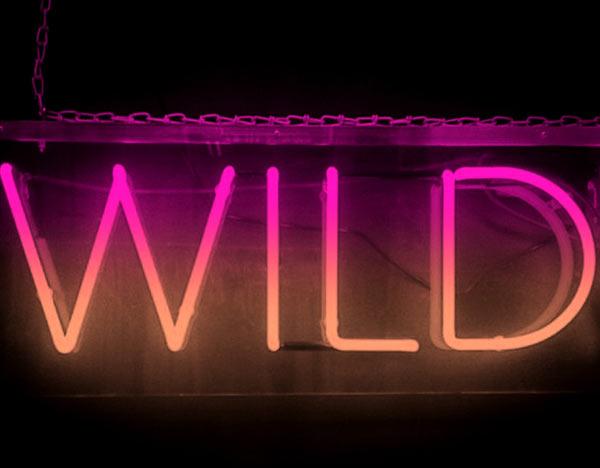 Lolan T Lookbook Wild