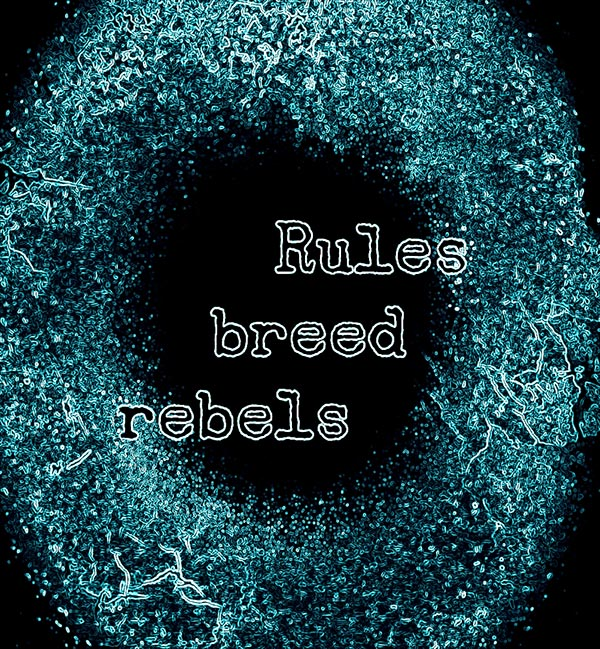 Lolan T Lookbook Rules breed rebels