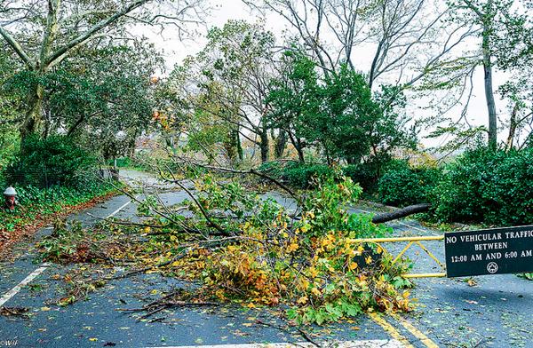 Hurricane Sandy - Washington Heights