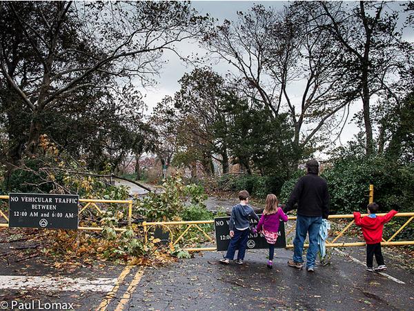 Hurricane Sandy - Paul Lomax