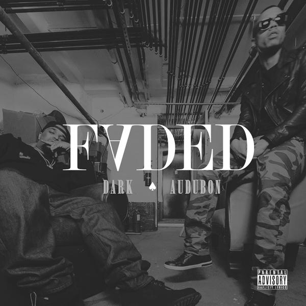 Faded Dark ft Audubon