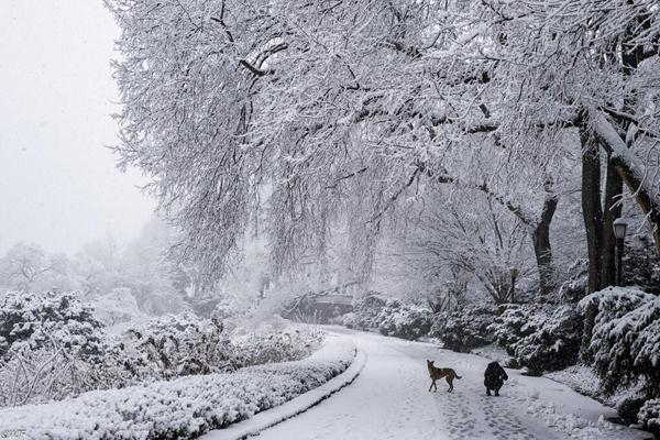 Snow Washington Heights
