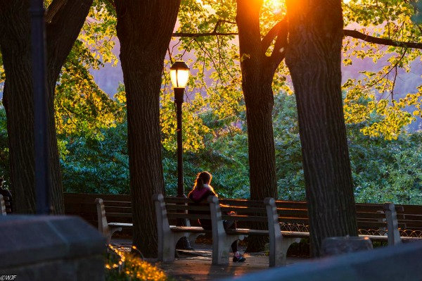 Sunset in Fort Tryon Park - Washington Heights - Wallace Flores