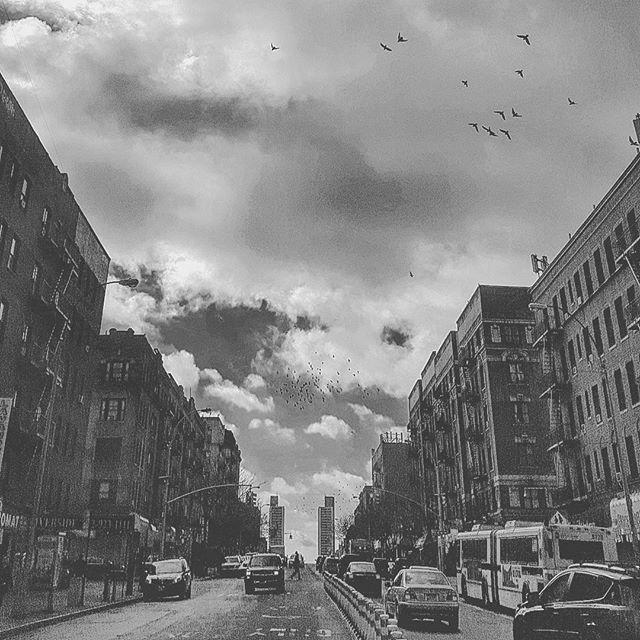 Wandering Taino - Bridge Apartments - Washington Heights