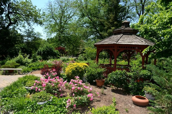 Bruce's Garden