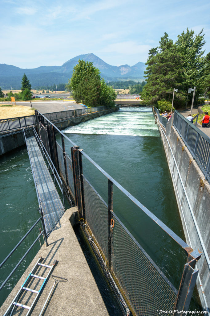 Bonneville Lock and Dam is a great engineering feat. Built by the Army Core of Engineers, it regulate the Columbia River's flow, but also allows passage for boats. Unfortunately, it's lead to the death and possibly start of extinction of Salmon in the Pacific Northwest.