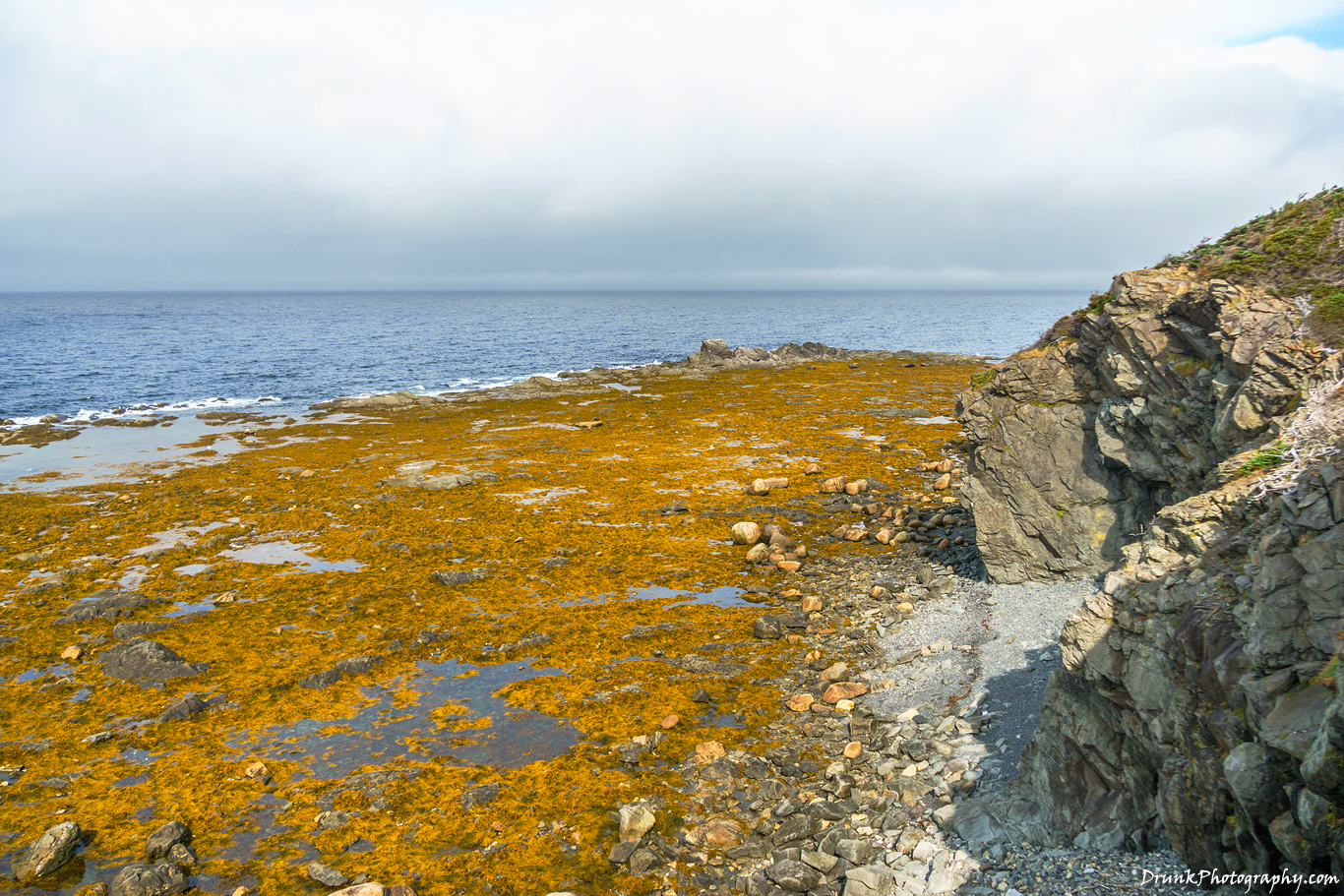 Rocky Harbour, Lobster Cove Head Lighthouse Drunkphotography.com
