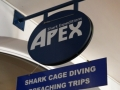 A day with Apex Shark Expeditions and Chris Fallows 34