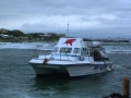 Great White Shark Tours Gansbaai South Africa caged diving 38