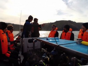 Sardine Run-Dive Briefing