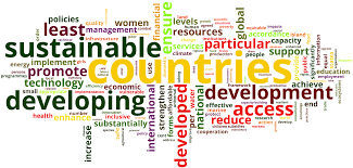 Achieving the UN Sustainable Development Goals and ISO 55000