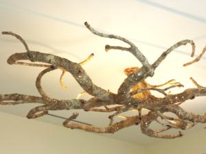1 ceiling