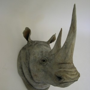 White Rhino Head Detail [24x41x36]