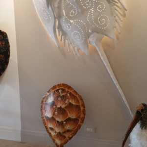 Horseshoe Crab Sculpture