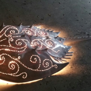 Horseshoe Crab Sculpture