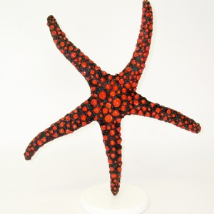 Red StarFish On Pedestal