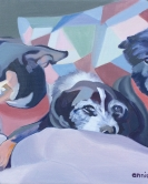 Meghan/Shannon's dogs