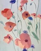 Poppies et Bleuets