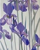Mes Irises