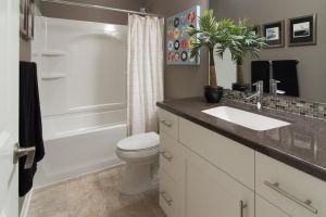 21 Walkout Level Bathroom