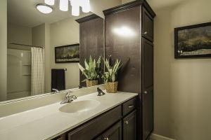 22 Walkout Level Bathroom