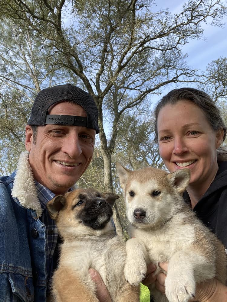 1 Love Dog Rescue