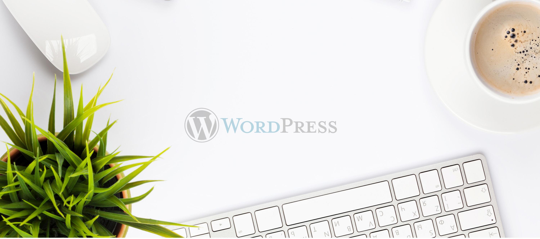 header-word-press-website-services-and-design