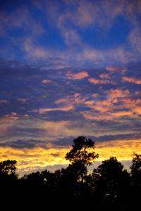 PEACE BEFORE THE STORM www.growingupgupta.com