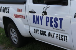 Ants Be GONE