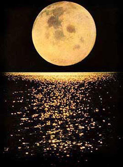 full_moon