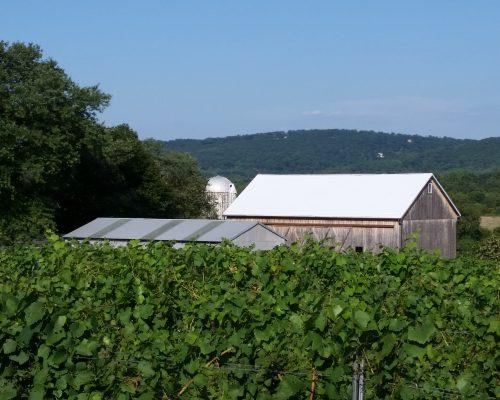 Antietam field