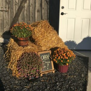 Fall decorations at the winery